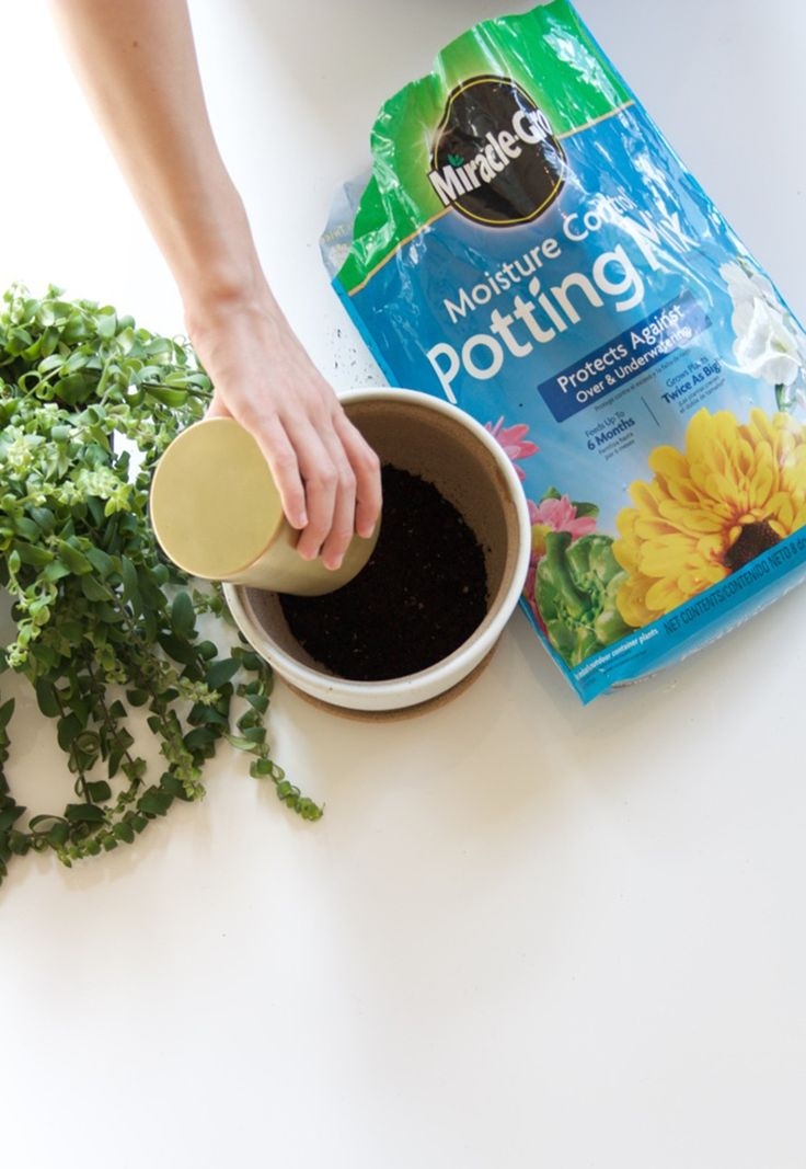 how to make potting mix at home