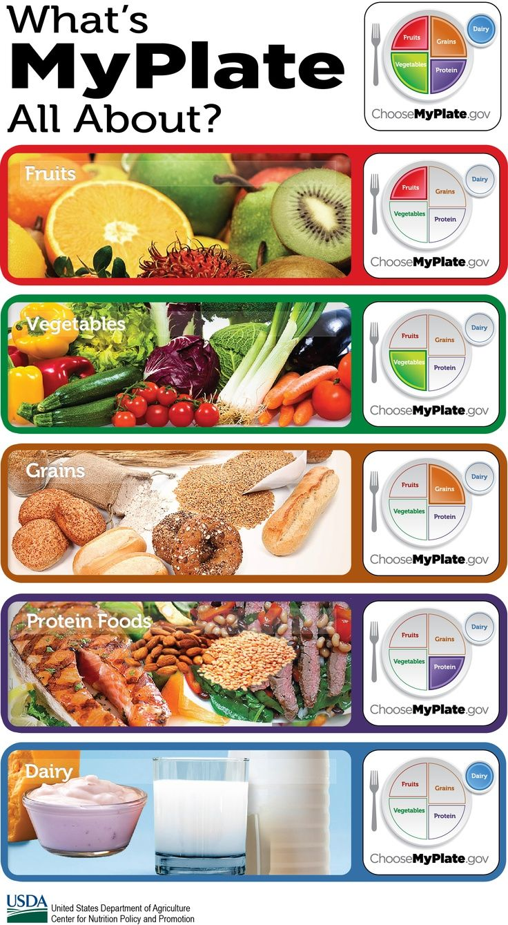Options from My Plate Dairy, protein, fruit, vegetable, whole grains Healthy meals for kids, men, women, families