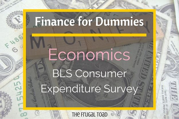 Finance for Dummies is a series about personal finance topics for those without a PhD in Finance!