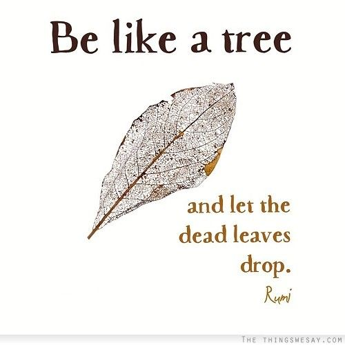 Be like a tree and let the dead leaves drop