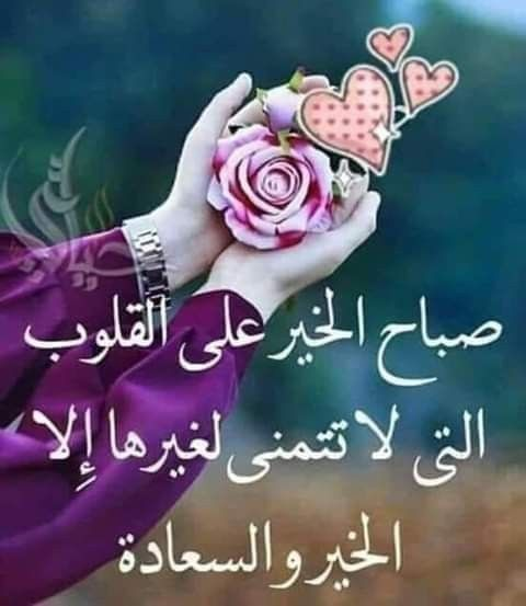 صباح الشهد والعسل صباح الحب والغزل صباح مصحوب بالامل صباح الورد يا عسل Floral Rose Floral Rings