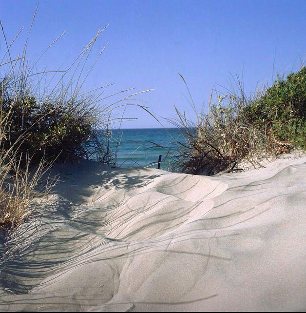 Fasano,dune costiere