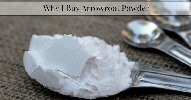 Where can i buy arrowroot powder