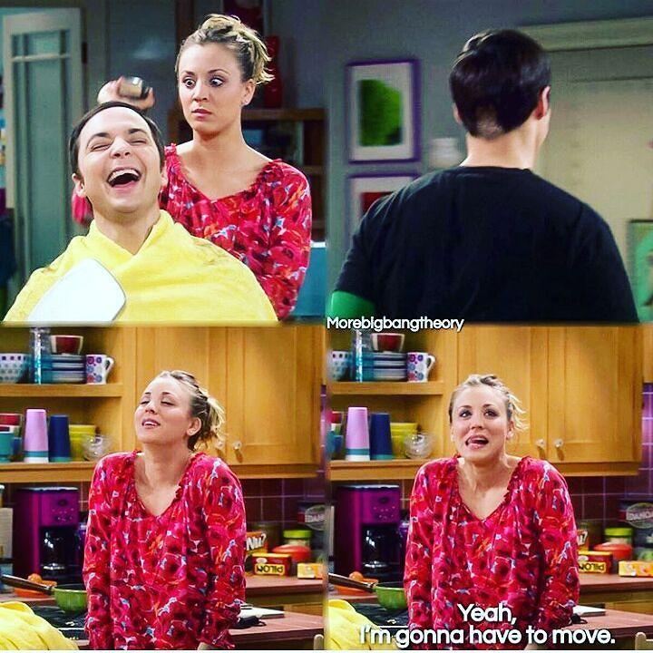Big Bang Theorists — The Big Bang Theory Merchandise:...