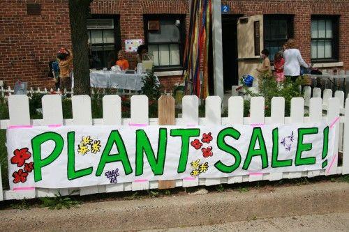 plant sale sign