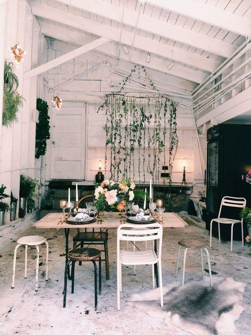 Ampersand, SF Flower Shop / Locale   Photo: Silvana Di Franco