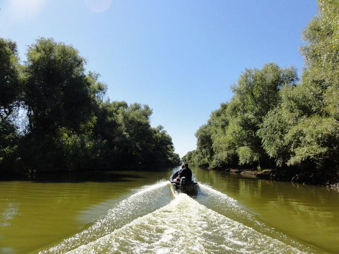 Delta Dunarii/ Danube Delta
