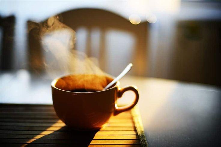 Ini dia 7 alasan kenapa kita minum kopi di pagi hari - Mengkonsumsi kopi di pagi hari mungkin sudah menjadi kebiasan bagi sebagian orang, namu terkadang ada juga orang yang mersakan nyeri di sekitar ulu hati dan langsung diare ketika meminum kopi, efek dari minum kopi ini memang terkadang berebeda beda tiap orangnya, namun terlepas dari hal tersebut... - https://pengenngopi.com/blog/manfaat-kopi/ini-dia-7-alasan-kenapa-kita-minum-kopi-di-pagi-hari/