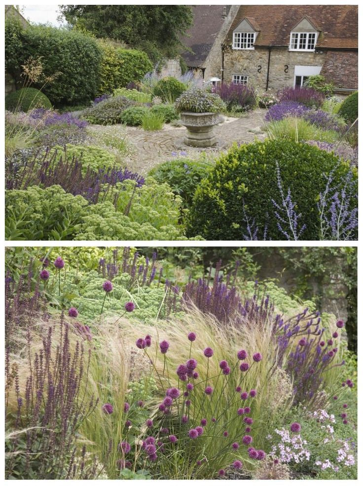 British garden designer Sarah Price added low-maintenance grasses to ornamental borders to create drama and height in a historic cottage garden in Oxfordshire. She used a simple, pared-down palette of sedum, salvias, origanum, erigeron, and Stipa gigantea to create structure, texture, and color all year. Piet Oudolf reflective.