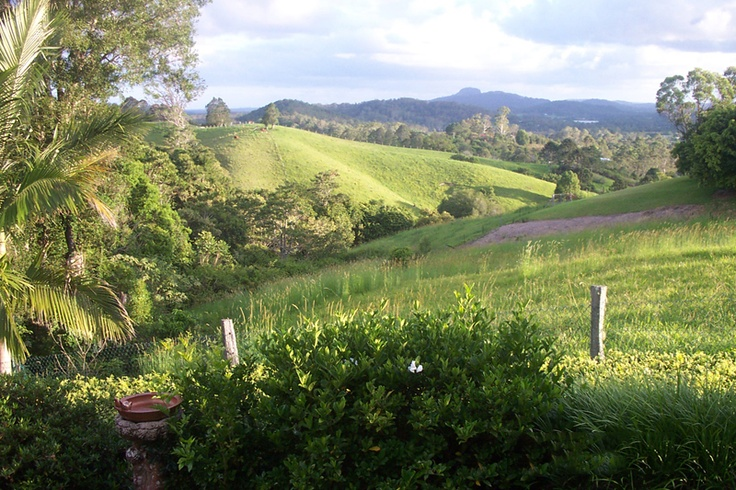 Eumundi in Pictures