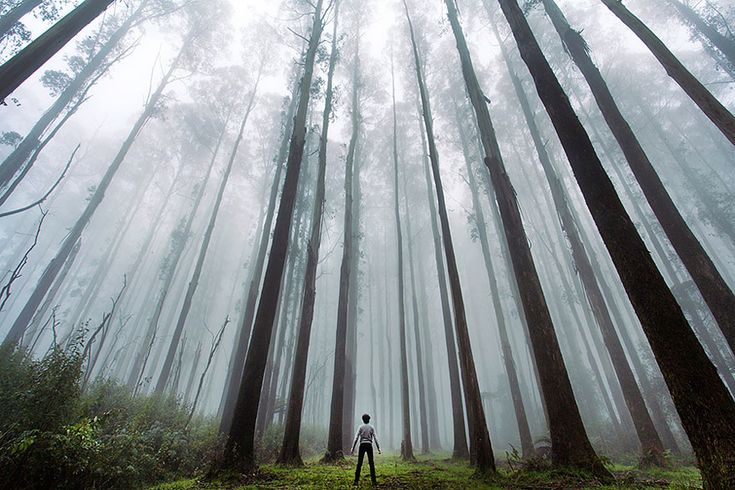 Photographers Captured Themselves In The Vastness Of Beautiful Nature