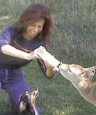 Jane Broccolo is an animal communicator, Polarity Wellness Educator, Reiki Master, animal rights/welfare activist, and writer on human-animal connections.