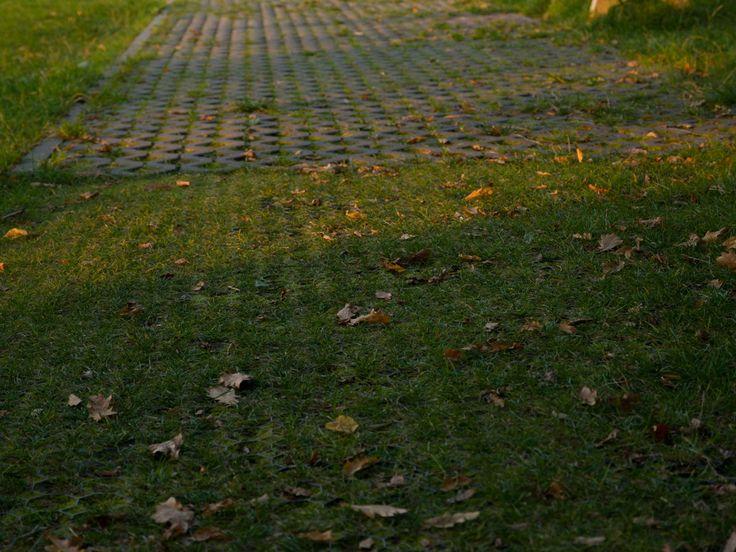 Les 513 meilleures images du tableau Blog Terrasse et Jardin sur ...