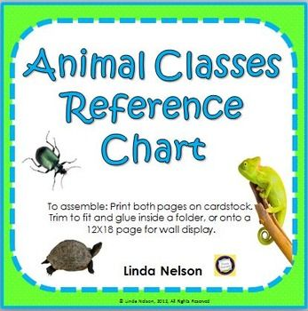 1000 Images About Animal Classification On Pinterest