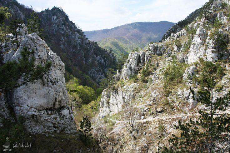 (Cheile Tasnei-Valea Cernei, Muntii Mehedinti)