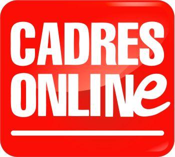 Le métier d'avocat analysé sous forme d'une fiche synthétique http://www.cadresonline.com/conseils/coaching/fiches-metiers-salaires/fiches-metiers/detail/article/avocat.html