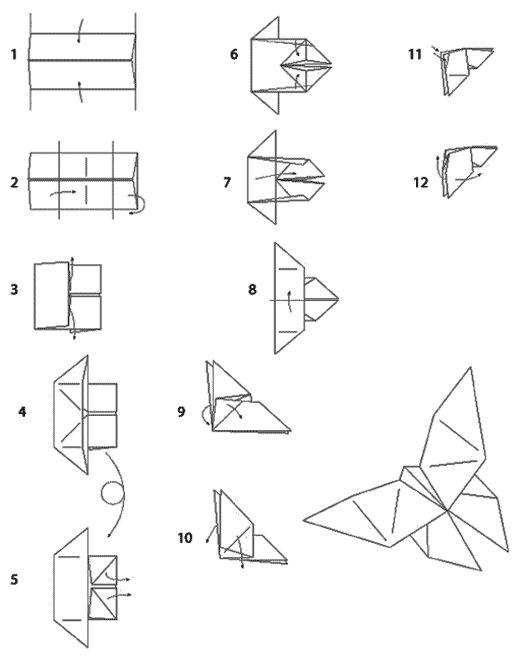 diagramme origami papillon
