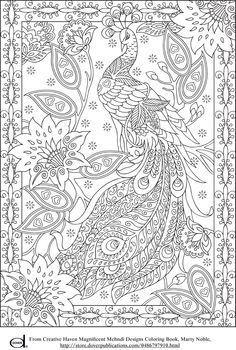 Kleurplaten Voor Volwassenen Met Tekst.Peacock Feather Coloring Pages Colouring Adult Detailed Advanced