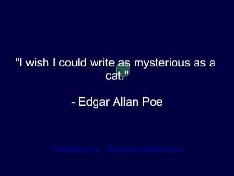 Even Poe recognized our ultimate superior.
