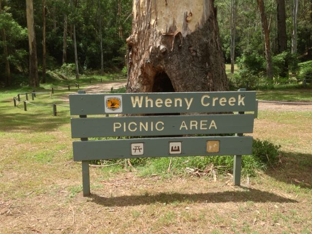 The #CampKingsCrew arrive at #WheenyCreek #campground on our #GTFO #GetTheFamilyOutdoors #adventure