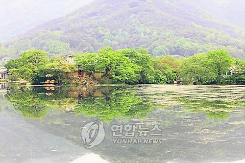 Korea Korea Korea