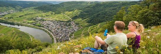 Moselsteig (long-distance trail)