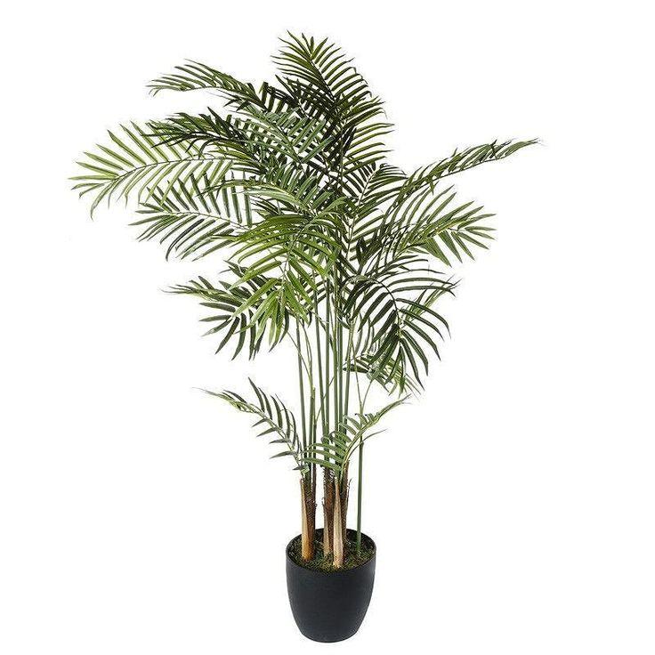 """Découvrez notre """"Plante Artificielle """"Palmier"""" 120cm"""" au prix de 4999 sur Paris-prix.com #palmier #palmiers #parisprix #deco #decoration #design #home #maison #intérieur #zen #bambou #zenitude #bienetre #plante #yucca by parisprix"""