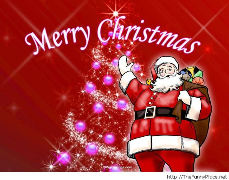 25 Unique Christmas Quotes Ideas On Pinterest: 25+ Unique Funny Merry Christmas Quotes Ideas On Pinterest