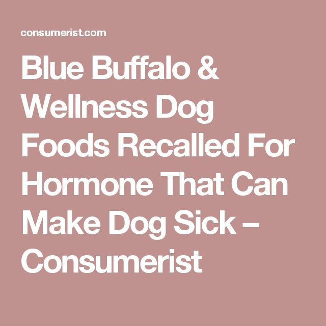 Blue Buffalo & Wellness Dog Foods Recalled For Hormone That Can Make Dog Sick – Consumerist