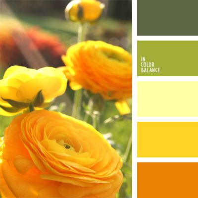 Warme Gelb- und Grüntöne eignen sich gut für Küchen, Schlafzimmer und Wohnzimmer. DieseFarbpalette kann man in verschiedenen Farbenverhältnissen für alle.