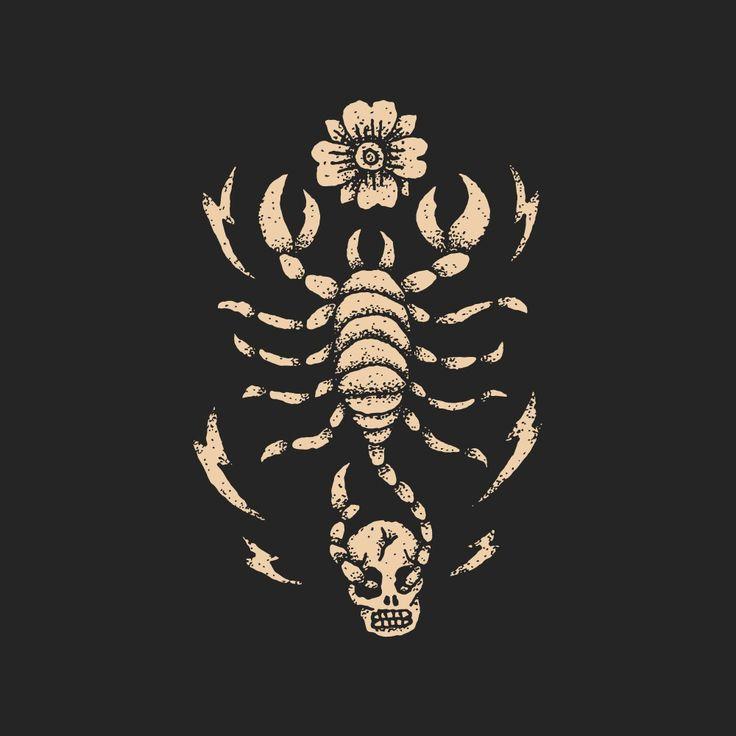 Scorpion Illustration