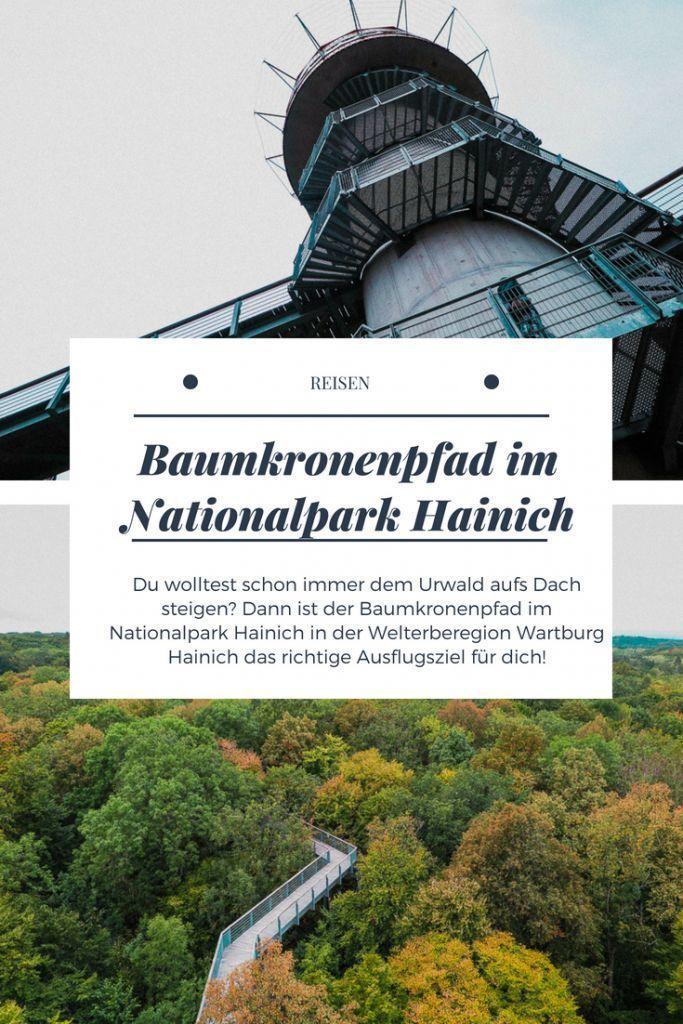 Baumkronenpfad Im Nationalpark Hainich Dem Urwald Aufs Dach Steigen Gunstig Urlaub Buchen Reisen Nationalpark