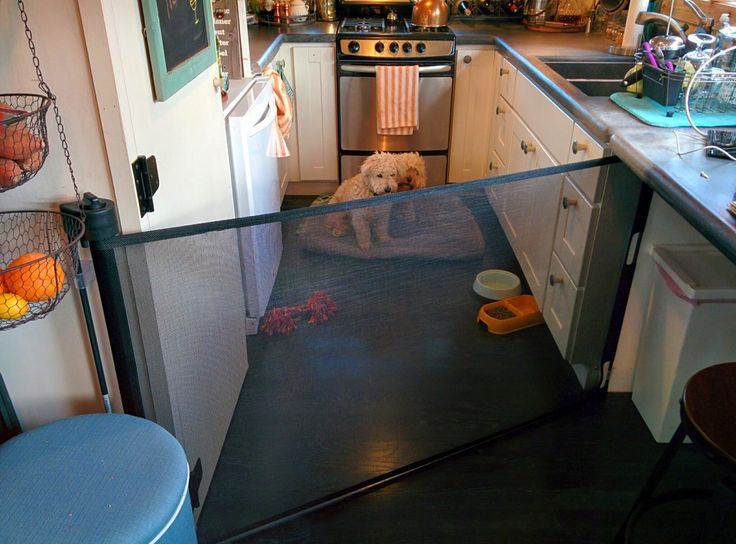 25 Best Ideas About Retractable Dog Gate On Pinterest