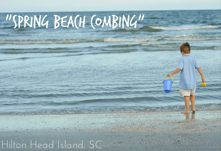17 best images about outdoor activities on hilton head for Hilton head surf fishing