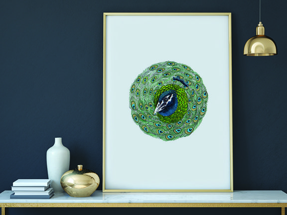 hand drawn peacock ball. Printable up to A2. Available for download from Etsy.com