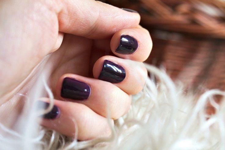 100 Black Purple