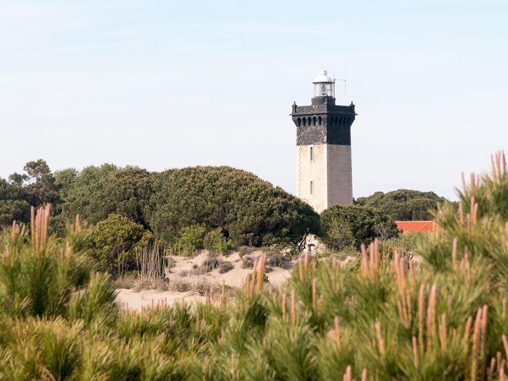 Située à l'extrémité ouest de la Petite Camargue, la flèche sableuse de l'Espiguette s'étire sur la mer. Ce site classé offre un spectacle de 530 ha de plage...