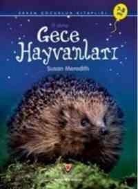 İlk Okuma : Gece Hayvanları