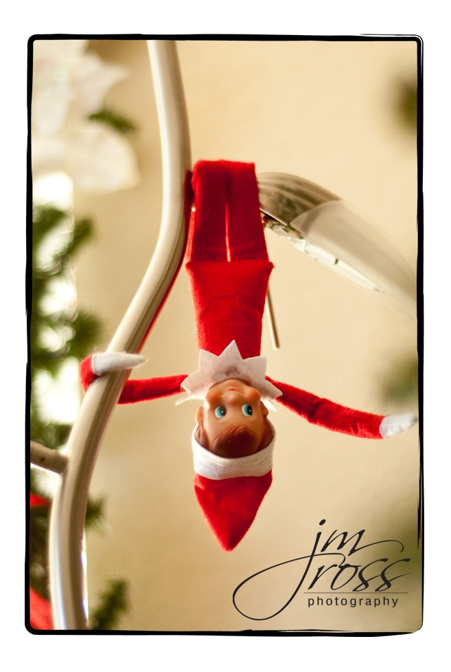 Elf on a Shelf: Shelf Upside, Shelf Hanging, Christmas Elf, Christmas Lights, Elf On Shelf, Shelf Things, Sweet Elf, Shelf Ideas, Christmas Ideas