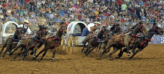 Rodeo | Houston Livestock Show & Rodeo Checked off the list but will go time and time again