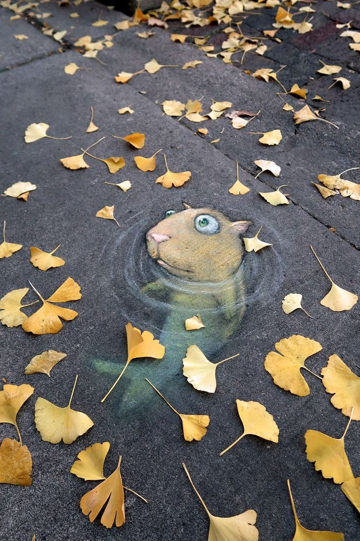 Street Art Utopia | By David Zinn - In Ann Arbor, Michigan, USA