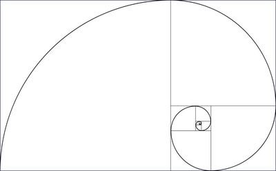 """The Fibonacci spiral is considered a logarithmic spiral, which are found everywhere in nature. Jakob Bernouli, a mathematician from a great family of brilliant people, called the logarithmic spiral spira mirabilis, or """"the Miraculous Spiral,"""" so called because the size increases but its shape is unaltered with each successive curve. This kind of spiral shows up in shells, in hurricanes, in flowers...  (cabinet-of-wonders.blogspot.com )"""