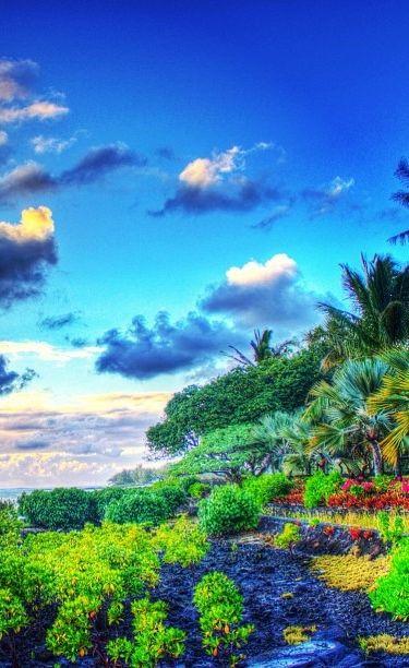 ✯ Shandrani Resort - Mauritius