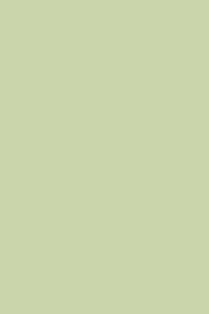 Cooking Apple Green | Paint Colours | Farrow & Ball - paired with parma gray and green ground?