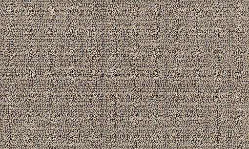 17 Best Images About Carpet Ideas On Pinterest Nylon