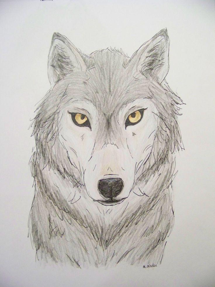 25 Beste Idee 235 N Over Hond Tekeningen Op Pinterest