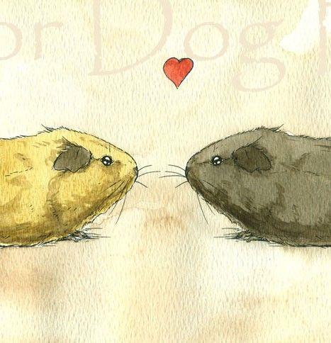 More Guinea Pig Love, Original Watercolor painted by poordogfarm