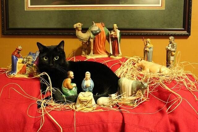 Alternative Nativity Scene