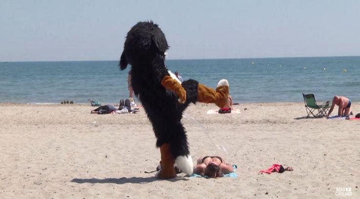"Rémi Gaillard : ""Το μόνο ελάττωμα του σκύλου είναι ότι εμπιστεύεται τους ανθρώπους"""