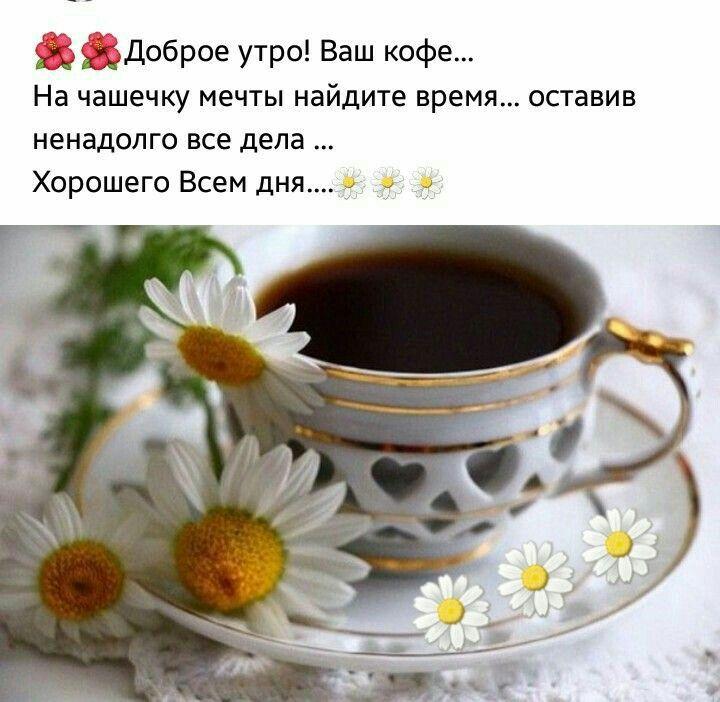 Pin Ot Polzovatelya Helen Smirnova Na Doske Good Morning Dobroe